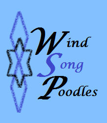 Wind Song Poodles